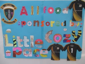 Posters made by 4th and 5th class